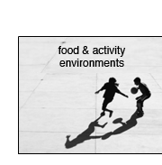 Food & Activity Environments